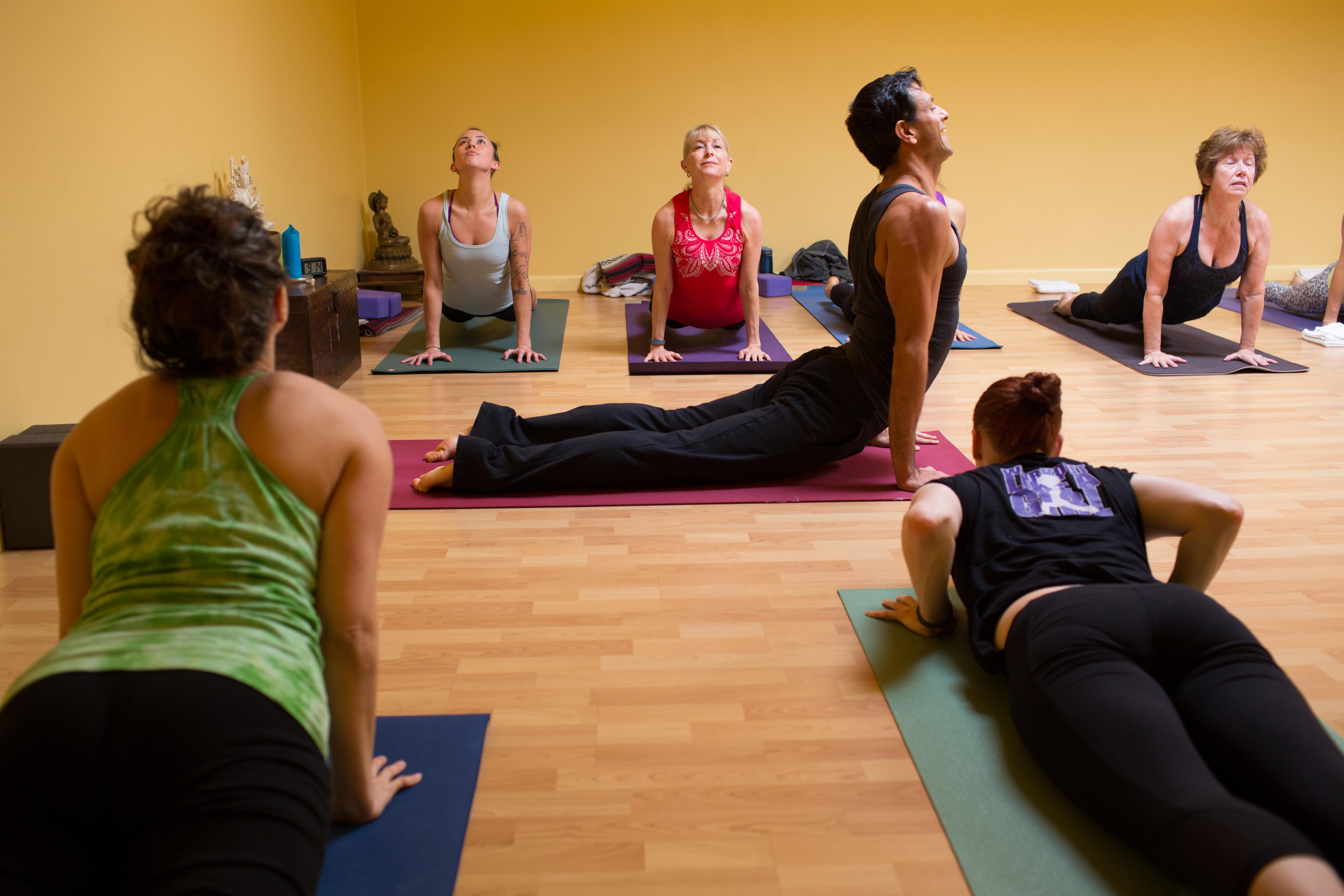 COURSE FULL: Vinyasa & Ashtanga Yoga teacher training in ...